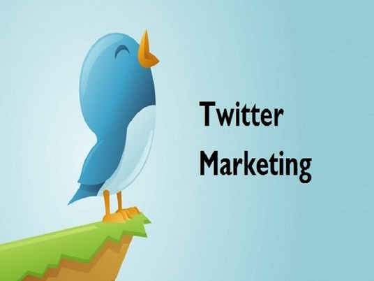 I will Professionally Do Twitter Marketing And Promotion