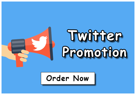 I will Give You 500+ Twitter  Real and Targeted Followers