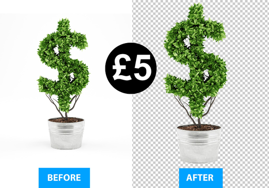 I will remove, cut out or change the background of 10 product images