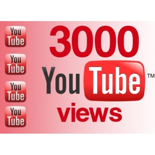 I will Provide  3000+ Real  Youtube Video Views