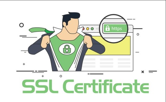 I will install premium SSL certificate for your  website