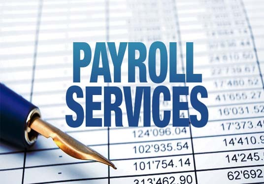 I will Provide Payroll And Hrm Services For Your Company