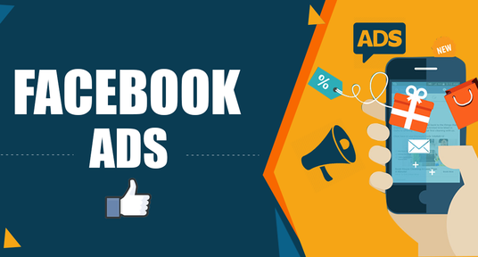 create and manage facebook ads campaign with good ROI