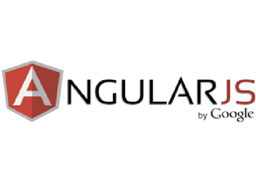 create an amazing website in Angular JS and asp.Net Core