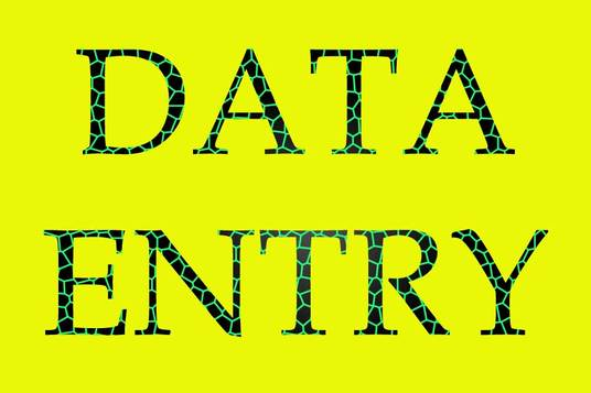 I will do any kind of data entry with 100% accuracy