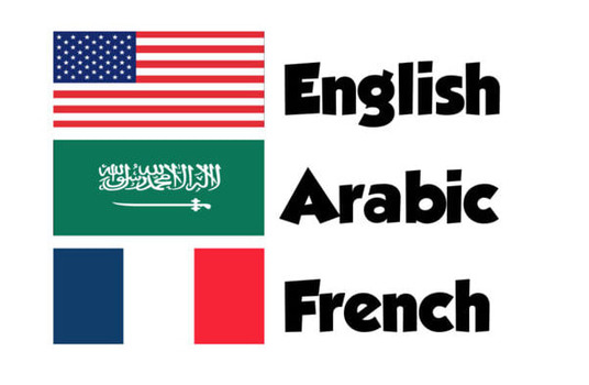 translate your document between English,French or Arabic - 600 Words