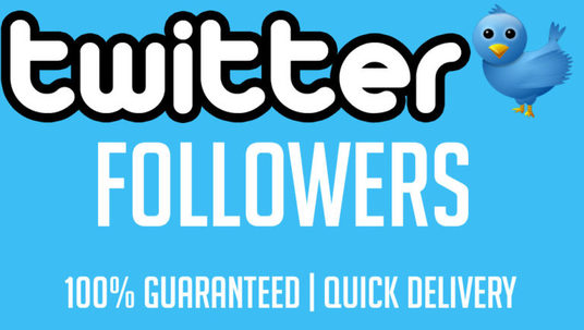 I will give you 1000+ real twitter followers in just 24hours
