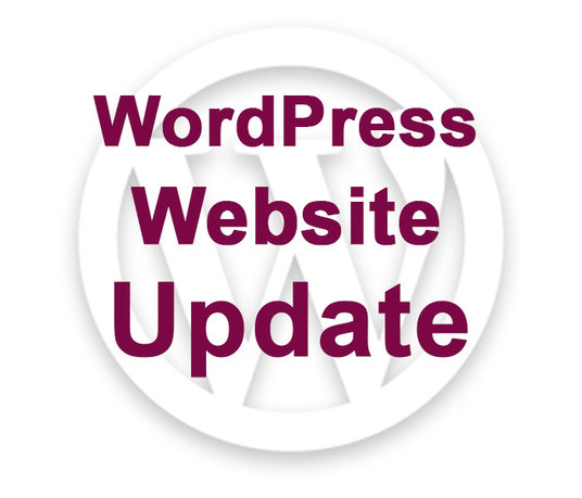 I will update your WordPress website