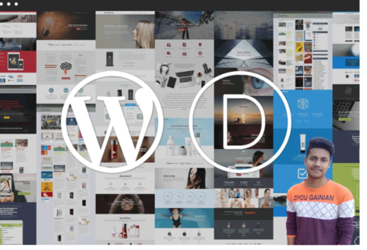 I will Build Any Type of WordPress Website With Divi Theme