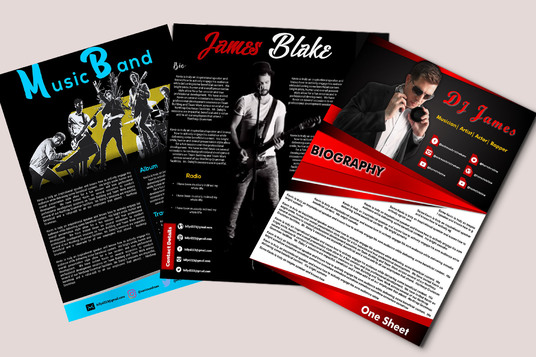 I will Design Professional Media Kit, Press kit, Epk For you
