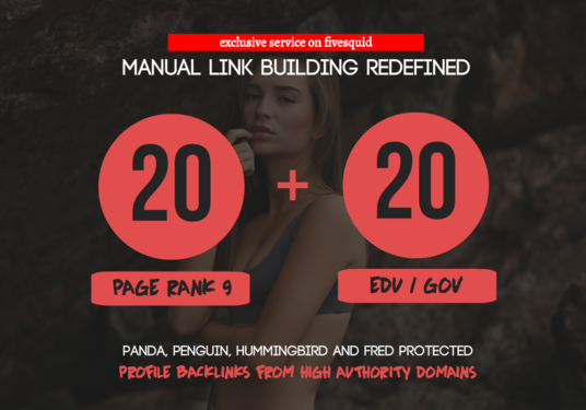 I will Build 20 Pr9 + 20 Edu - Gov High Pr SEO Authority Backlinks - Fire Your Google Ranking
