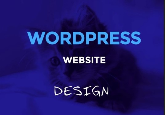 I will design a professional and attractive  website