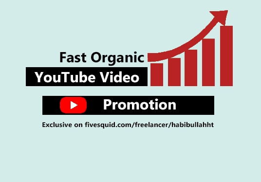 I will do Fast Organic YouTube Video Promotion