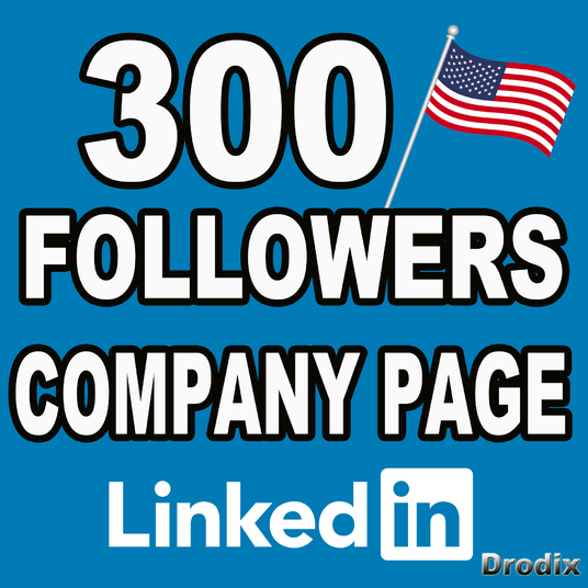 I will I give you 300 real Linkedin followers on company pages - USA