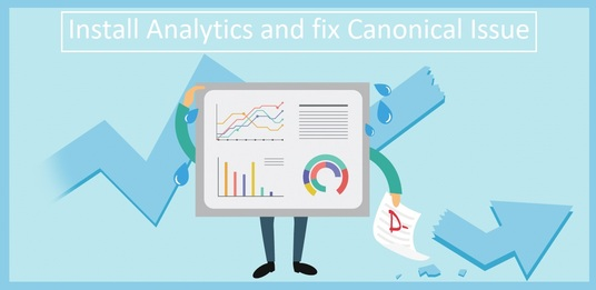 setup google analytics  and solve the canonical problem of any website
