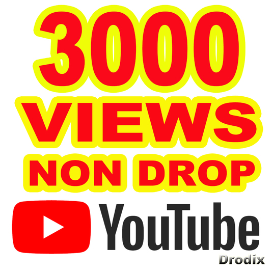 I will provide 3000 Views YouTube Non Drop