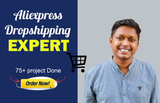 I will Build Aliexpress Dropshipping Website