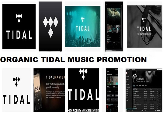 I will do organic Tidal music promotion to active audiences