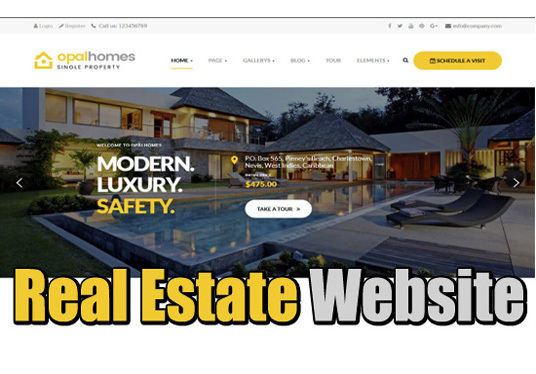 I will design real estate website in wordpress for you