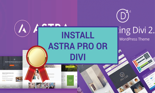 I will install Astra Pro or Divi theme on your website