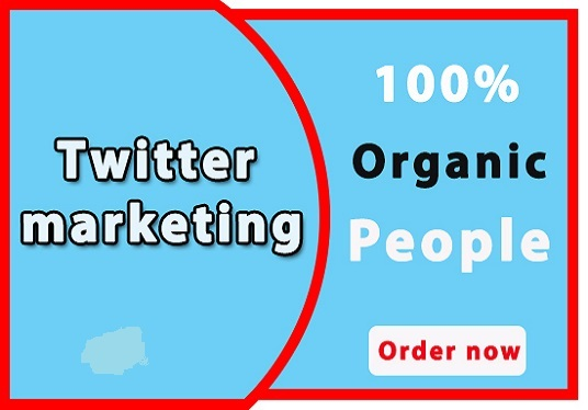 I will do professional twitter marketing