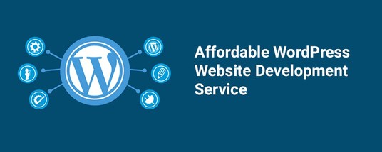 I will Design and develop responsive and professional Wordpress website
