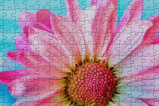 I will Transform Your Photos Into Beautiful 3D Puzzle Photo Effect