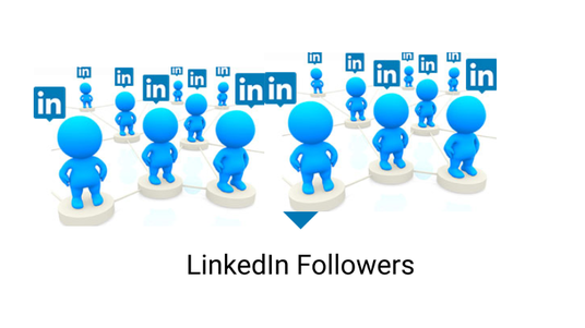 I will provide 300 USA LinkedIn Profile Followers