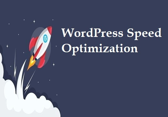 I will Speed up your WordPress website and optimize your website