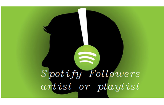 I will provide 1000+ spotify artist or playlist followers Non Drop