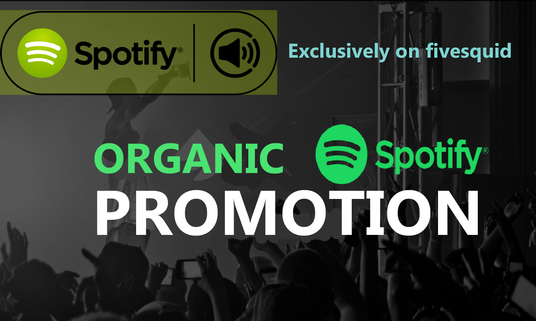 I will Do Organic Spotify Promotion for your Track