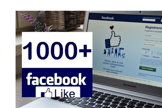 I will add 1000 real facebook likes