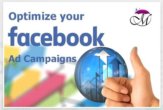 I will Setup Facebook Ads For Your Business