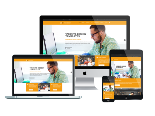 I will Create and Customize Responsive SEO Friendly Wordpress Website