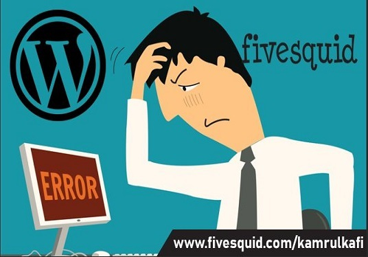 I will Fix WordPress Bugs or Problems within 24 hours