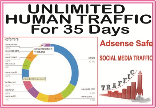 Do 35 Days Unique USA Traffic from Social & Main Search Engines