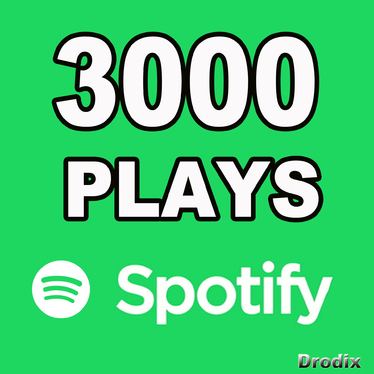 Provide 3000 Spotify Plays