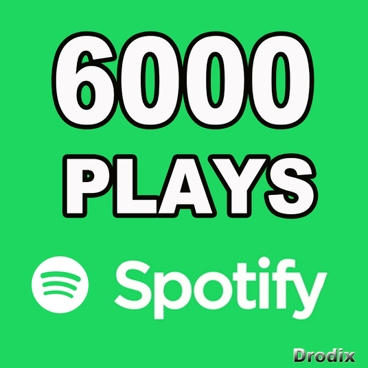 I will Provide 6000 Spotify Plays