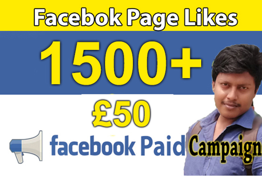 I will run facebook paid ad campaign to grow page likes