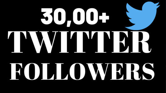 I will give you 3000 real active  twitter followers