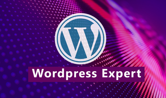 Be Your Personal Expert Wordpress Developer And Consultant
