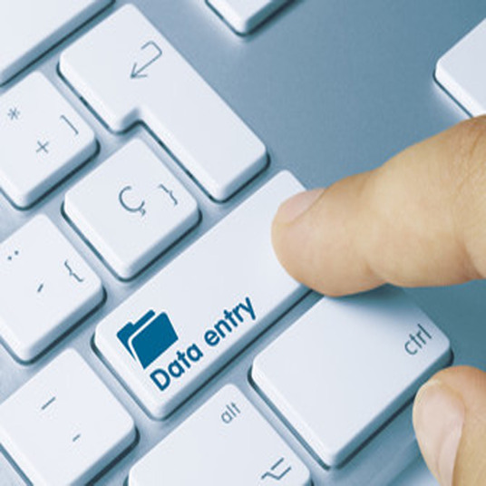 I will do data entry, data research, web research, data format converting and virtual assistance