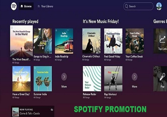 I will do organic  spotify music promotion to active audiences