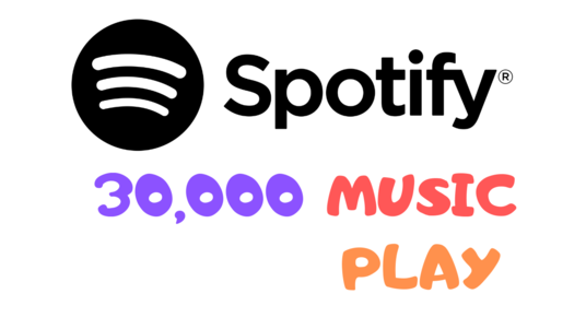 I will Do Valuable  Spotify Music Promotion