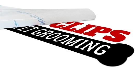 I will print and post your logo as a vinyl decal stickers