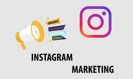 I will Teach You How To Grow Instagram Account Organically
