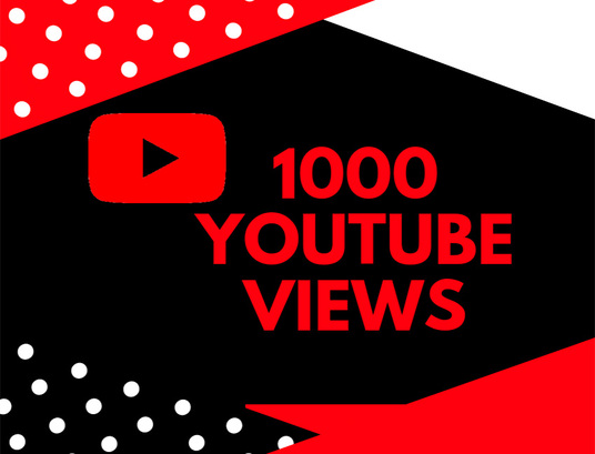 I will provide 1000 YouTube video views