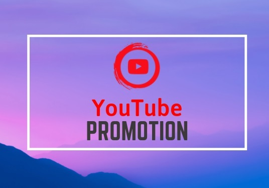 I will provide 1000+ YouTube Video Views effectively
