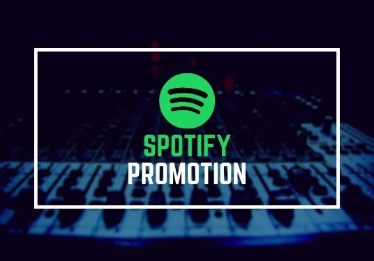 provide 1000+ Spotify Music Plays effectively