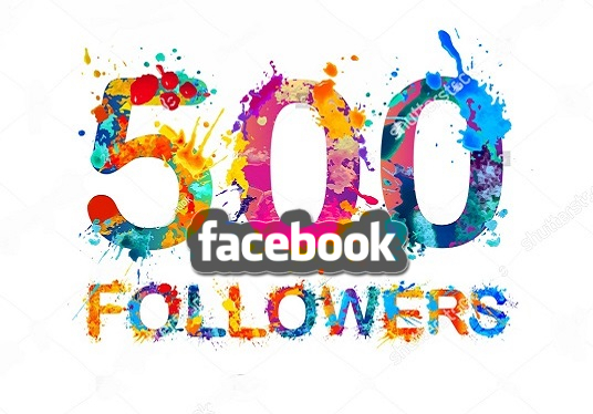 I will give you 500 real follower in your facebook account